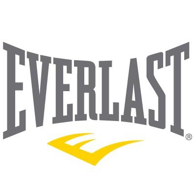 Everlast logo vector in .AI format