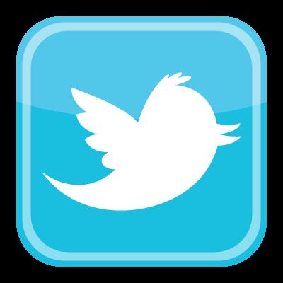 Twitter bird icon vector