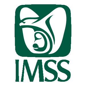 IMSS logo vector