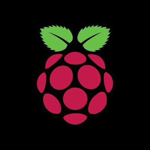 Raspberry Pi logo vector